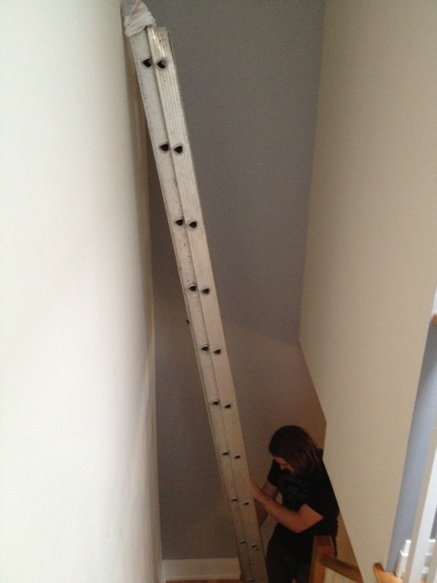 The ladder in the staircase