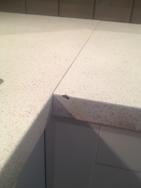 Project concrete countertops storefront life for Seamless quartz countertops