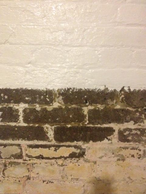 Painting the brick